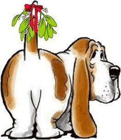 HoundDogMom: It Might Be Looking Like Christmas