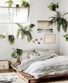 Bedroom decor ideas: Styling with plants domenica's picture by Domenica Tan — 06 Apr 2017 10:58