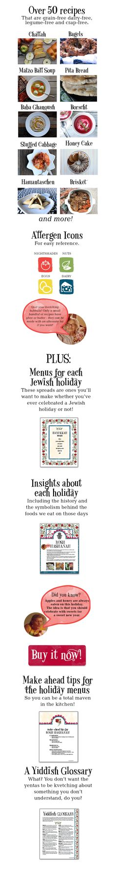 Yiddish Kitchen | Grain Free Jewish Recipes for the Holidays and Everday ~ an E-book