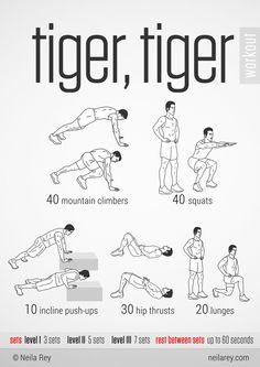 Tiger, Tiger Workout
