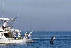 fighting a marlin