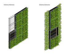 Imagen 12 de 16 de la galería de Materiales: Muros Verdes / Descontaminantes, Acústicos y Térmicos.