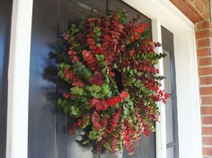 Christmas Eucalyptus Wreath 24 inch Christmas by elegantholidays, $60.00