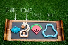 assorted teethers - Dr. Brown's