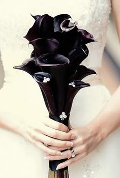 Black calla lily boquet. Oh my god I just died a little!! Love love love!!