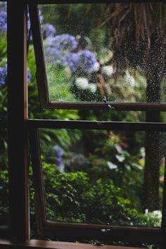 Summer rain.. Ryan Clough