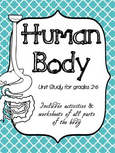 Learn about the human body with this massive human body unit! Kids will love all the fun activities as well as the accompanying worksheets.