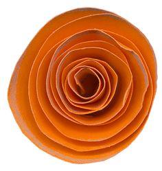 scrap orange