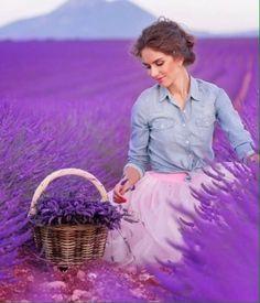 Lavender Cottage, Provence Lavender, Lavender Blue, Lavender Fields, Lavender Flowers, Love Flowers, Purple Flowers, Creative Photography, Girl Photography