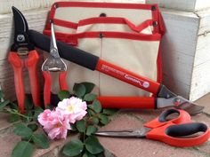 #GARDENGIVEAWAY Corona Tools' Rose Pruning Kit   Gardening with Confidence & Plants with Benefits with Helen Yoest