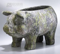86 Best Piggy Gardening Planter Images On Pinterest