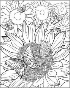 coloring pages Search on Indulgy.com