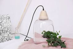 Milo LAMP for plants by Aga Janukanis https://www.etsy.com/shop/AgaJanukanisShop