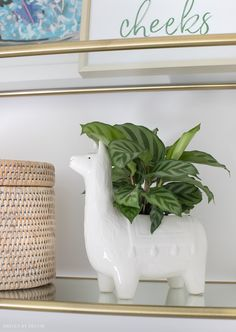 Super cute llama planter! Tile Shower Niche, Styling Bookshelves, Driven By Decor, Hygge Home, New England Homes, Cozy House, Earthy, Master Bathroom, Decorating Your Home