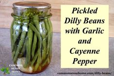 Pickled Dilly Beans with Garlic and Cayenne Pepper - this easy vinegar pickle will allow you to can green beans without a pressure canner. Canning Tips, Canning Recipes, Pesto, Canning Food Preservation, Preserving Food, Dilly Beans, Canning Pickles, Canning Salsa, Best Pickles