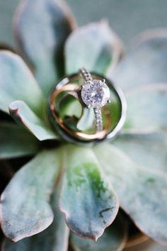 Engagement Rings 2017/ 2018   Romantic North Carolina Botanical Gardens Wedding
