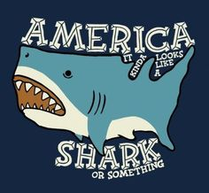 Sharks are taking over