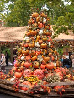 It's almost time for the Harvest & Gospel Celebration at Dollywood!