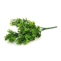 Gifts By Meeta Green Asparagus Stem Artificial Flower Bunch - Add oodles of style to your home with an exciting range of designer furniture, furnishings, decor items and kitchenware. We promise to deliver best quality products at best prices.