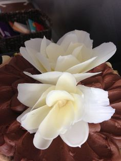 How to make a chocolate flower — Tutorial video. I think with a bit of trial and error (to get the right length and curl to the petals), you could make even more beautiful flowers than she did.