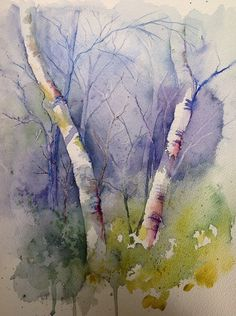 Love the soft colours and depth in this loose watercolour of birch trees by Judith Jerams.