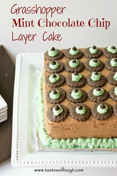 Grasshopper Mint Chocolate Chip Layer Cake {Tastes of Lizzy T} If you love mint and chocolate, you'll love this simple cake! http://www.tastesoflizzyt.com/2013/07/01/grasshopper-mint-chocolate-chip-layer-cake/