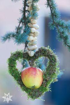 vogelvoer hart i.p.v. moshart kun je ook 2 takken gierst tot een hart vormen