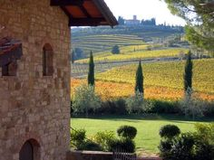 Greve in Chianti:Gateway into Chianti from Florence,Visit Greve in Chianti