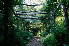 North Hll Garden - same path, less bloom.