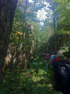 Go trekking to Ulko-Tammio island Take It Easy, Trekking, Things To Do, Public, Island, Gallery, Pictures, Finland, Block Island