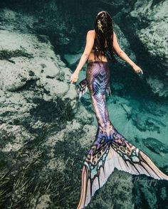 * lswim tail flickering in the cool sea waves. Age - * I swim tail flickering in the cool sea waves. Fantasy Mermaids, Real Mermaids, Mermaids And Mermen, Mermaid Man, Mermaid Cove, Art Vampire, Vampire Knight, Realistic Mermaid Tails, Real Mermaid Tails