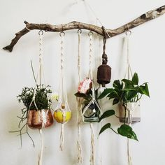 Macrame Plant, Plant Hanger, Weaving, Wreaths, Green, Instagram Posts, Home Decor, Handicraft, Plants