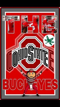 Ohio State Mascot, Ohio State Baby, Ohio State Football, Ohio State University, Ohio State Buckeyes, College Football, Cleveland Browns Wallpaper, Ohio State Wallpaper, Buckeye Crafts