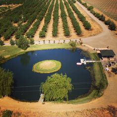 The Historic Oakdale Ranch, Esparto, CA - from above
