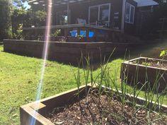 Recycled garden beds. Zero waste.
