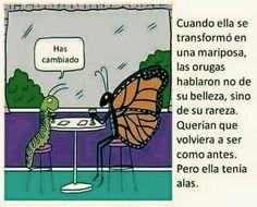 Cuando ella se transformó en mariposa, las orugas no hablaron de su belleza, sino de su rareza