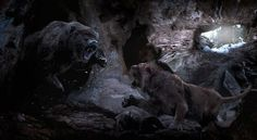 Face off between a Cave Bear & Cave Lion.