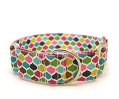 1.5 dog collar Taj Mahal buckle or martingale collar by TheModDog