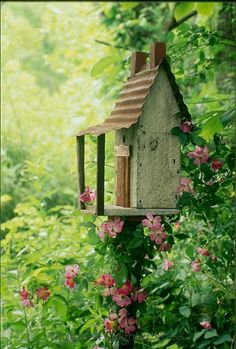 Rustic ozark cabin birdhouse as garden art with a vine of wild roses growing on it in shade garden
