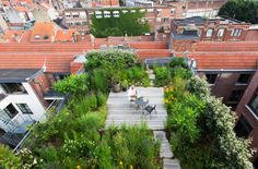 The new luxury : rooftop gardens | Tribù