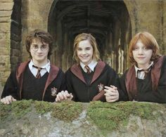 Harry, Rony e Mione!