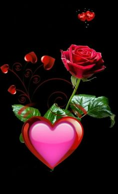 Image gallery – Page 441000988510272013 – Artofit Beautiful Love Images, Love Heart Images, Love You Images, Beautiful Rose Flowers, Romantic Flowers, Cute Galaxy Wallpaper, Heart Wallpaper, Apple Wallpaper, Cute Wallpaper Backgrounds