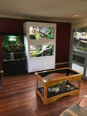Reptile room set-up Reptile Habitat, Reptile House, Reptile Room, Reptile Cage, Terrarium Serpent, Terrarium Reptile, Aquarium Terrarium, Rabbit Cages, Terrariums