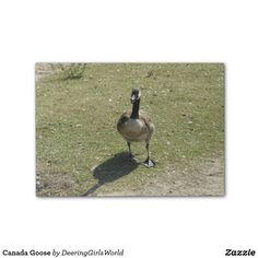 Canada Goose Post-it® Notes