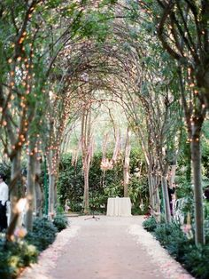 Tree canopy aisle with fairy lights - this gives off the feeling of being married in an enchanted forest!