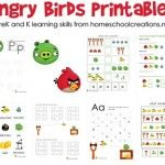 These Angry Bird Printables would make an amazingly cute lapbook for both my four and five year old.
