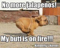 Butt is on fire