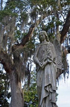 Magnolia Cemetery, 70 Cunnington Ave, Charleston. A beautiful c. 1849 cemetery featuring live oaks, river fed ponds, and over 2000 graves of Civil War soldiers.