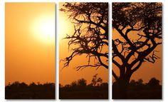 Foto schilderij Afrikaanse zonsondergang op canvas (Moremi Botswana)