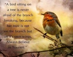 Never loose trust on yourself....